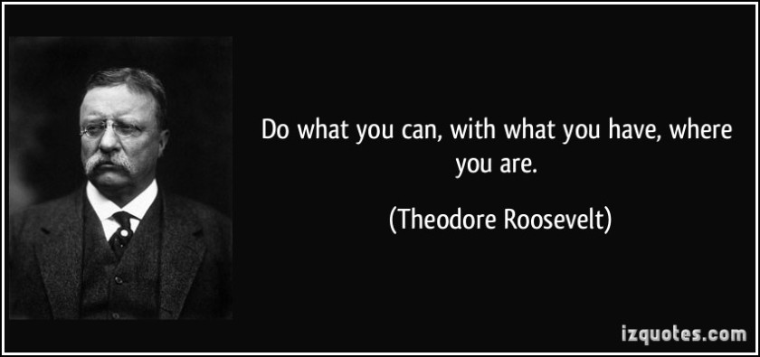 quote-do-what-you-can-with-what-you-have-where-you-are-theodore-roosevelt-158028[1]